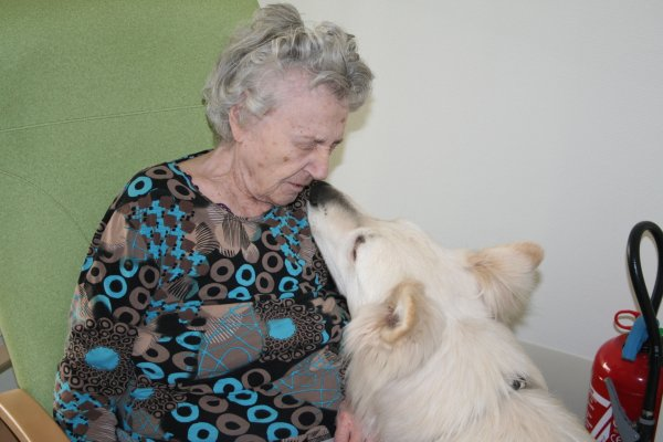 Haslan Chien visiteur en maison de retraite