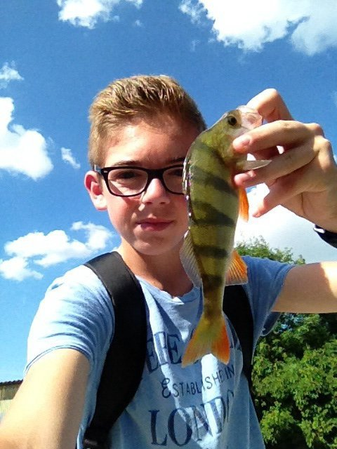 Street-Fisheur-51  fête aujourd'hui ses 18 ans, pense à lui offrir un cadeau.Hier à 08:49