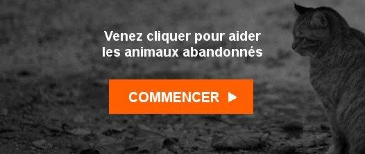 Sujet : Les animaux attendent vos clics Animal Webaction <ne-pas-repondre@animalwebaction.com> marcbarbion <marcbarbion@aim.com> Je, 22 Fév 2018 6:40