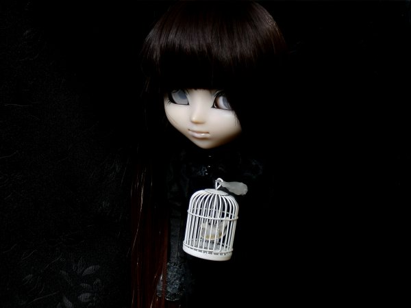 Nouvelle demoiselle~