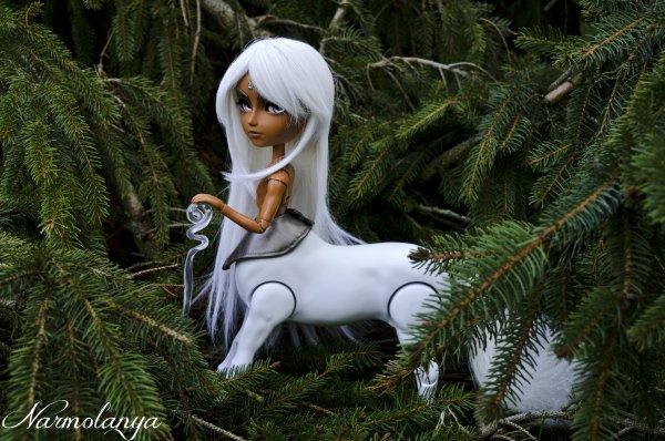 Le centaure blanc, gardien des forêts!