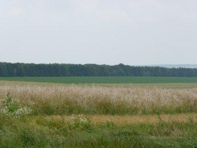 avant de mettre des photos de moisson, voila les photos de l'orage du 28jiuin dans la plaine...