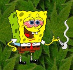 Ne marche pas sur l'herbe, fume la c'est plus rigolo.