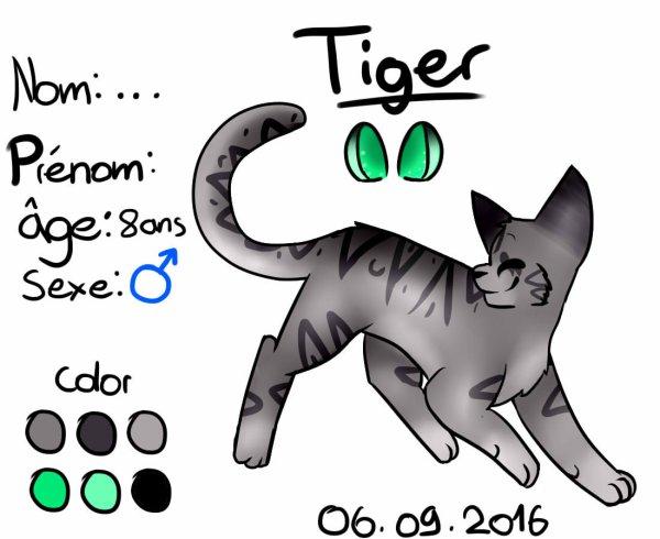 Réference Sheet de Tiger
