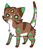 Nouvel OC chat! : Cookie