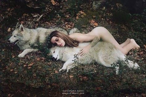 z adore les loups