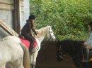 Photo de poney-club-de-sciez