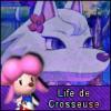 Life-de-Crosseuse