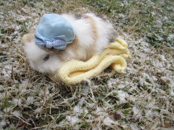 P'tit Truc découvre la neige