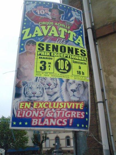 quille du cirque zavatta fils a senones 88