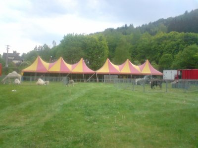 installation du cirque zavatta fils a senones 88