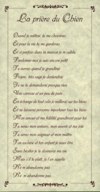 LA  PRIERE  DU  CHIEN ...