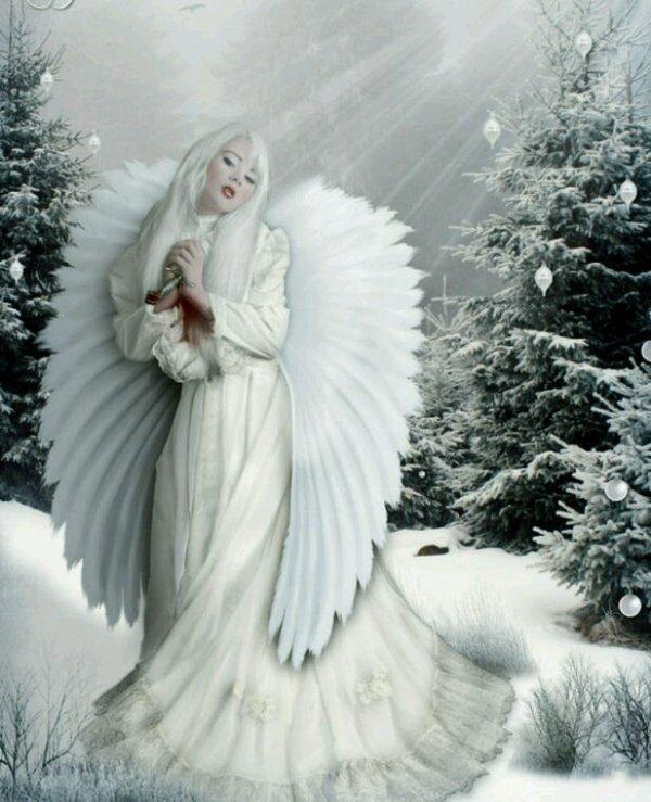 On nai tput un ange qui nous protege