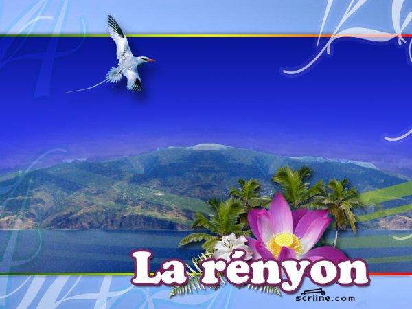 $) LA R£NYON BI£N SUR  $)
