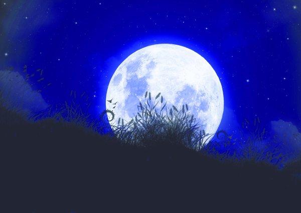 Clan de la Lune