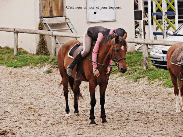 Nacre , Tu et bien plus qu'un poney <3 Le poney d'une vie .