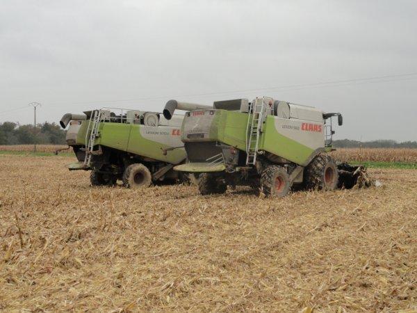 moisson de maïs 2013 avec les Lexion...