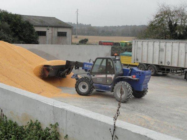 On vide le silo de maïs a la Coopérative...