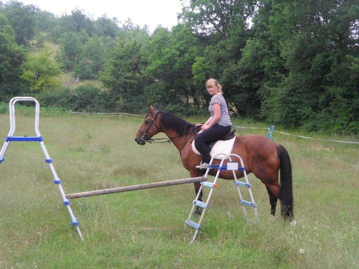 Blog de Horse-46