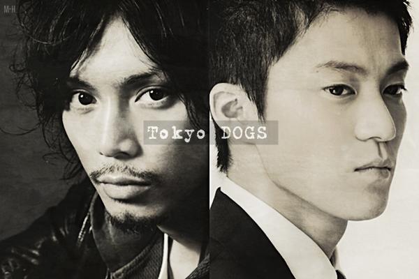 • Tokyo DOGS ~ Drama Japonais ~ 10 épisodes ~ 2009