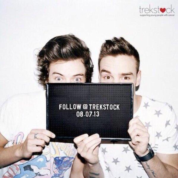 Trekstock