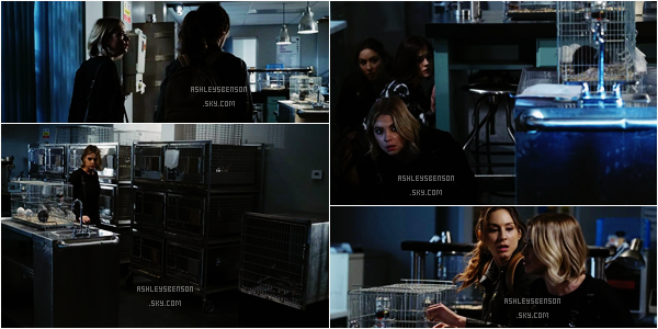 """Voici les stills de la saison 6 de PLL, l'épisode 6 intitulé """"No Stone Unturned"""" et l'épisode 8 """"FrAmed""""."""