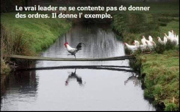 Le vrai leader
