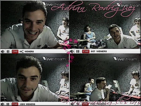 ARTICLE TWITTCAM