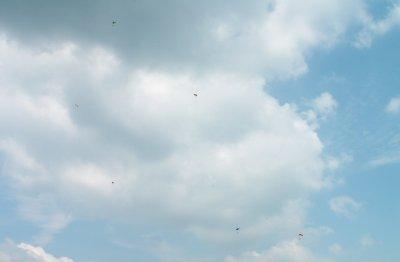 Des parachutistes