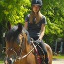Photo de horse-ecuriesduvernet31