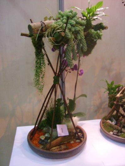 Olympiades des métiers 2012: Jardin suspendu