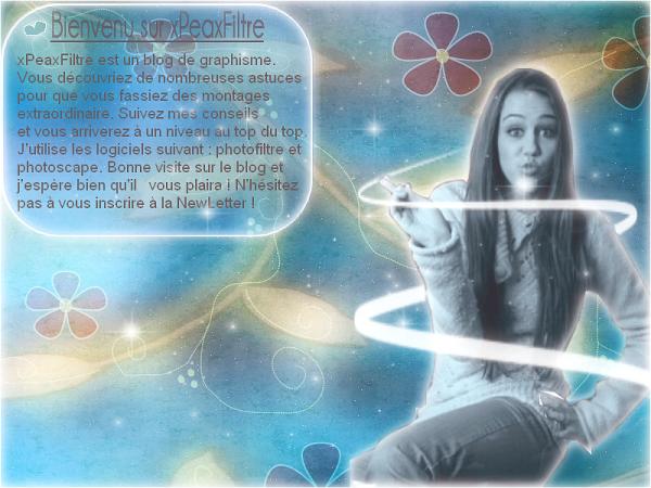 ♠ Présentαtion du blog . ♥