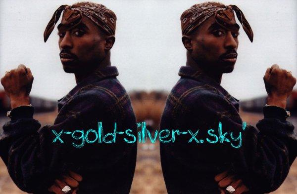 Bienvenue sur x-gold-silver-x