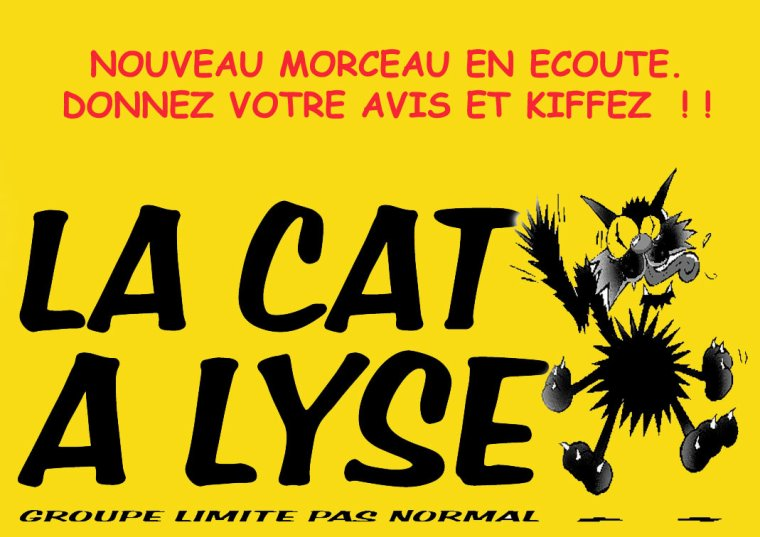 LA CAT A LYSE / LA FILLE DU COUPEUR DE JOINT (2011)
