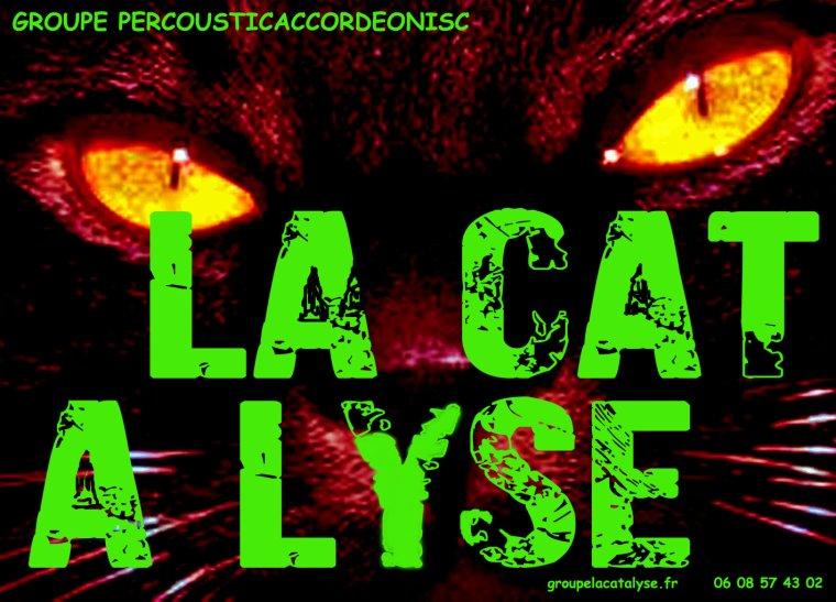 NOUVELLE AFFICHE      LA CAT A LYSE