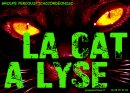 Photo de la-cat-a-lyse