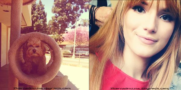 • Nouvelles photos Instagram/Twitter de Bella.