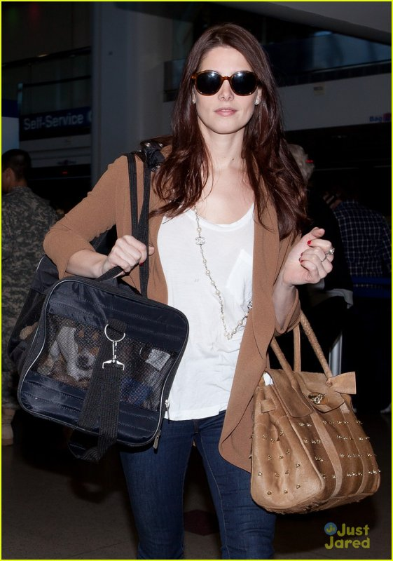 Ashley Greene de sortie .