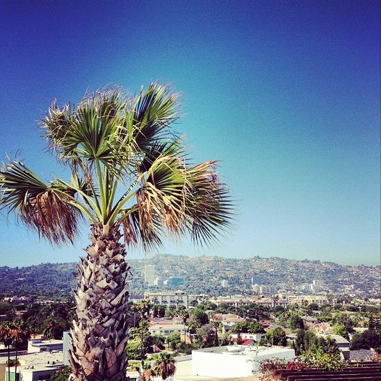 Tal à Los Angeles !