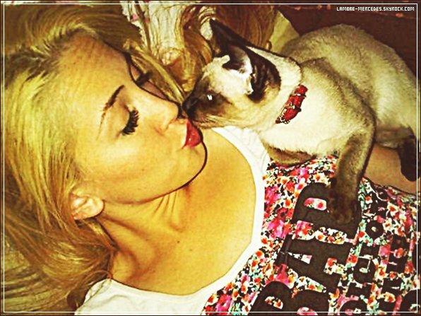 www.Lambre-Mercedes.skyrock • • Votre blog source sur la pétillante Mercedes Lambre !' ▪  A , travers  candids , photoshoots et beaucoup d'autres, suis tout l'actualite de  Mercedes Lambre  et de son plus belle humeur !