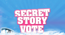 Photo de secret-story-vote