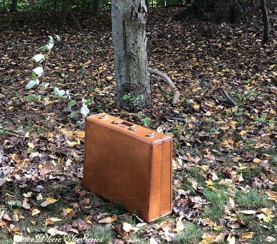 The Blacklist s5 Red découvre que Tom possède la valise