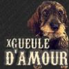 xGueuleDamour