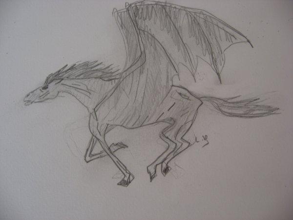 """cheval noir"""