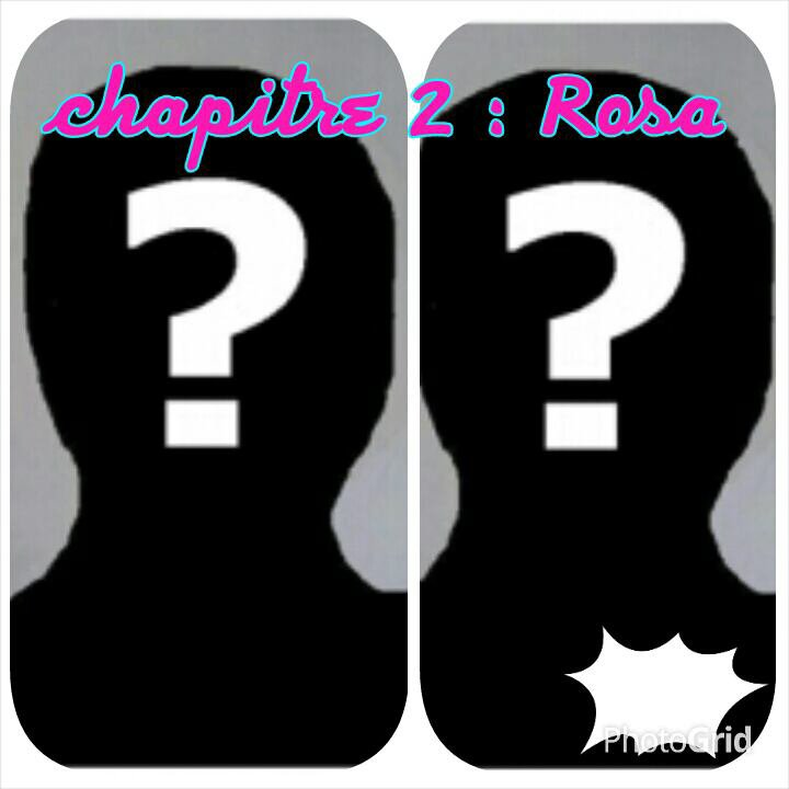 Chapitre 2: Rosa