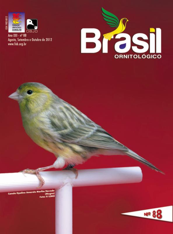 BRUN OPALE MADE IN BRASIL