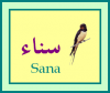 sanouch1997