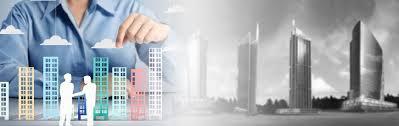 real estate software development