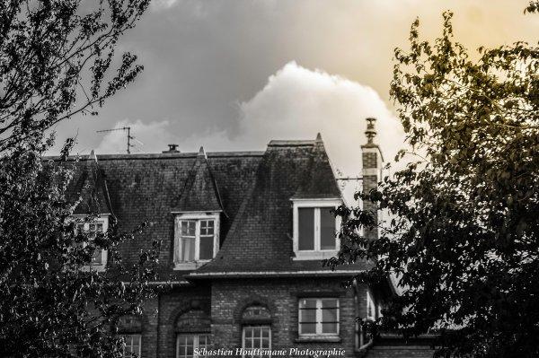 Sébastien Houttemane Photographe amateur à Tourcoing (59)