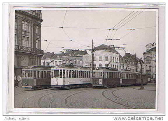trams et bus.6